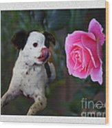 Dog With Pink Rose Wood Print