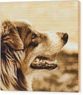 Doggie Face Wood Print