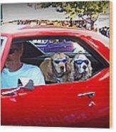 Doggies In The Window Wood Print
