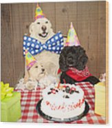 Doggy Birthday Party Wood Print by Jan Tyler