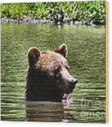 Doggy Paddle Wood Print