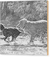 Dogs In A Stream Pencil Portrait Wood Print