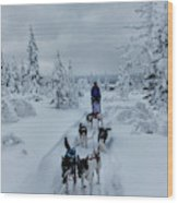Dogsledding Through The Forest Wood Print