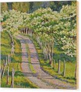 Dogwood Allee Wood Print