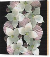 Dogwood And Poppies Wood Print