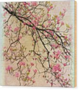 Dogwood Canvas 3 Wood Print