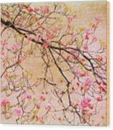 Dogwood  Canvas Wood Print