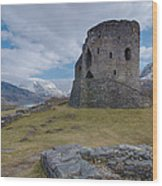 Dolbadarn Castle Wood Print