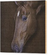 Dolly Wood Print