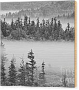 Dolly Sods Wilderness D300_10363_bw Wood Print