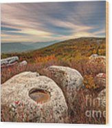 Dolly Sods Wilderness D30019870 Wood Print
