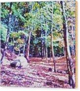 Dolmen Pass Wood Print