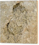 Dolomite Crystals Wood Print