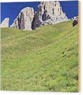 Dolomites - Grohmann Peak Wood Print