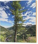 Dolomites - Tree Over The Valley Wood Print
