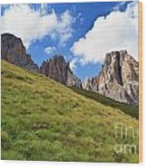 Dolomites On Summer Wood Print