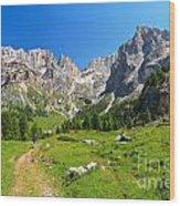 Dolomiti - Contrin Valley Wood Print