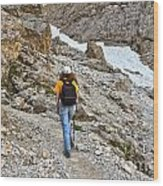 Dolomiti - Hiker In Val Setus Wood Print
