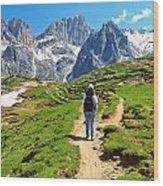 Dolomiti - Hiking In Contrin Valley Wood Print