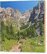 Dolomiti -landscape In Contrin Valley Wood Print