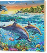 Dolphin Bay Wood Print by Adrian Chesterman