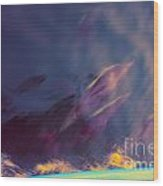 Dolphin Play Wood Print