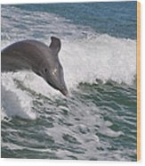 Dolphin Riding The Waves Wood Print