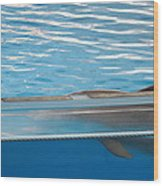 Dolphin Show - National Aquarium In Baltimore Md - 121211 Wood Print by DC Photographer
