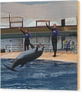 Dolphin Show - National Aquarium In Baltimore Md - 1212139 Wood Print