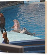Dolphin Show - National Aquarium In Baltimore Md - 1212174 Wood Print by DC Photographer
