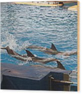 Dolphin Show - National Aquarium In Baltimore Md - 1212187 Wood Print