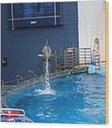 Dolphin Show - National Aquarium In Baltimore Md - 1212200 Wood Print