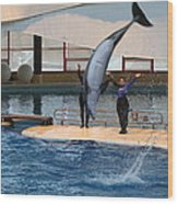 Dolphin Show - National Aquarium In Baltimore Md - 1212273 Wood Print by DC Photographer