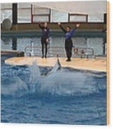 Dolphin Show - National Aquarium In Baltimore Md - 1212278 Wood Print