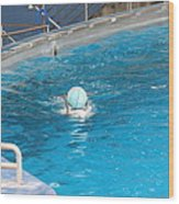 Dolphin Show - National Aquarium In Baltimore Md - 121236 Wood Print