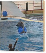 Dolphin Show - National Aquarium In Baltimore Md - 121240 Wood Print by DC Photographer