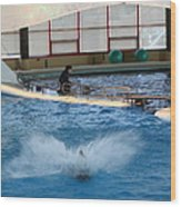 Dolphin Show - National Aquarium In Baltimore Md - 121297 Wood Print by DC Photographer