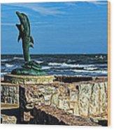 Dolphin Statue Wood Print