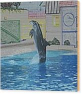 Dolphin Walking On Water Digital Art Wood Print