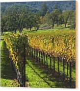 Domaine Chandon Vineyard Wood Print