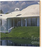 Dome Home Wood Print