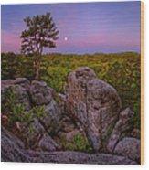 Dome Rock Wood Print