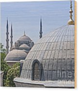 Domes Of Istanbul Wood Print