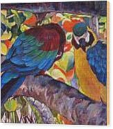 Dominican Birds Wood Print