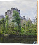 Donegal Castle In Donegaltown Ireland Wood Print