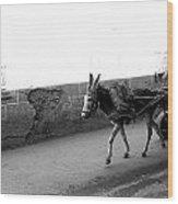 Donkey Cart In Marrakech Wood Print