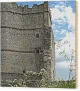 Donnington Castle Wood Print