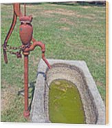 Don't Drink The Water Wood Print