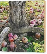 Don't Sit Under The Apple Tree With Anyone Else But Me Wood Print