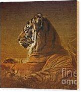 Don't Wake A Sleeping Tiger Wood Print